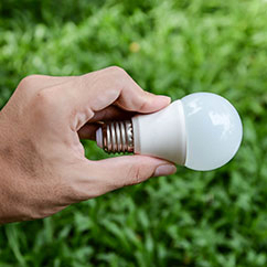 holding LED lightbulb